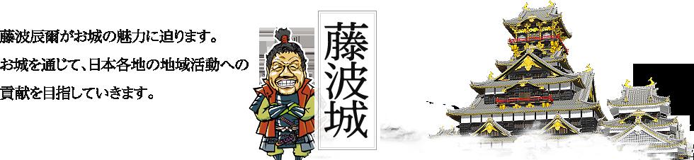 藤波城 藤波辰爾がお城の魅力に迫ります。お城を通じて、日本各地の地域活動への貢献を目指していきます。